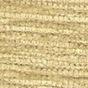 Modena Wheat